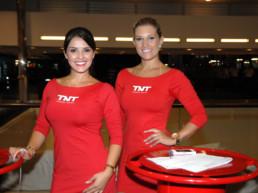 GP - Fernando Alonso | TSB Travel Solutions